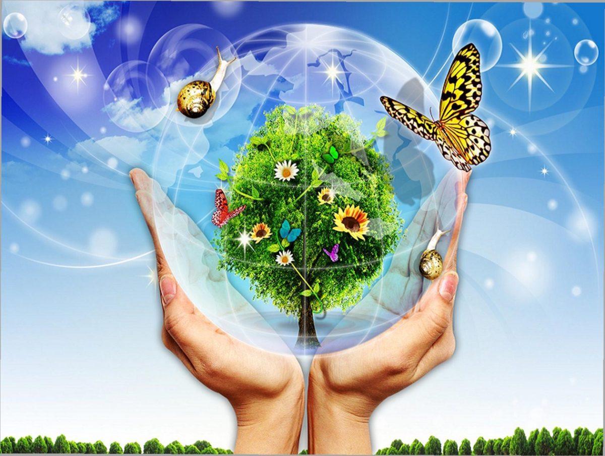 Открытка зайка, экологические открытки конкурс